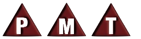 PMT Chartered Professional Accountants LLP logo